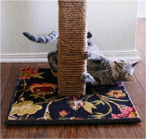 Mainan Laser Untuk Kucing cara membuat mainan kucing mudah dan praktis
