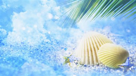 computer wallpaper summer summer wallpapers best wallpapers