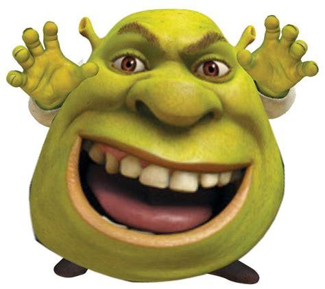 Shrek Memes - 15 best shrek images on pinterest dankest memes shrek memes and fresh memes