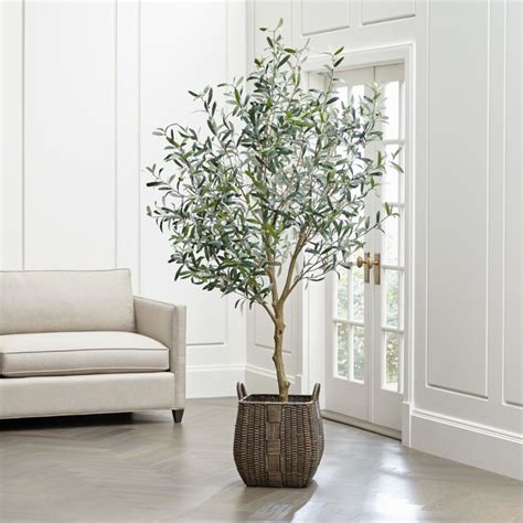 faux olive tree reviews crate  barrel