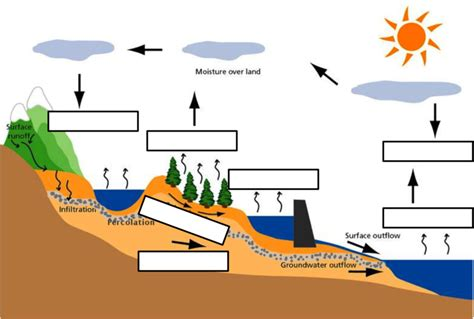 blank water cycle diagram printable search results for hydrological cycle blank diagram