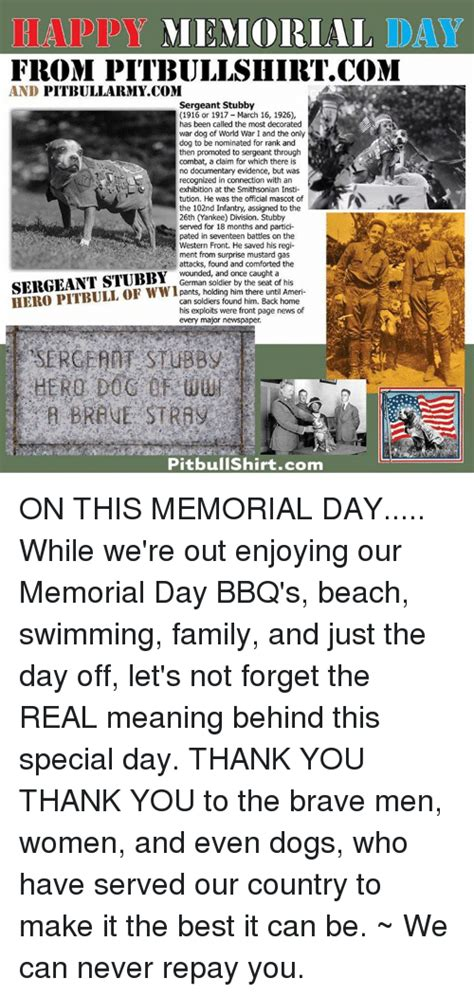 Sergeant Stubby Documentary Eap Memorial Day From Pitbullshirtcom And Pittbullarmy Sergeant Stubby 1916 Or 1917 March 16