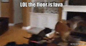 Floor Is Lava Game by The Floor Is Lava Memes Funny Pictures Tweets Teen Com