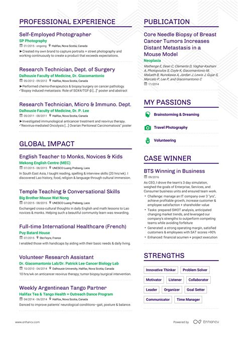 Successful Resumes by Successful Resumes Career Change Enhancv