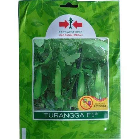 Bibit Terong F1 jual benih terong hijau turangga f1 400 biji panah merah