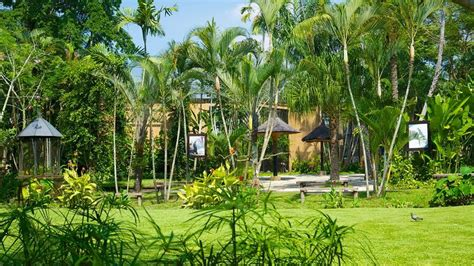 Taxa Hotel Bali Indonesia Asia visite parque de aves de bali em batubulan expedia br