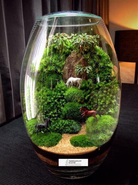 Pot Terrarium Vas Terrarium Aquarium Kaca Mini Garden Miniature 1 532098d713e779ba71592d28252fafa1 jpg 716 215 960 terrariums water gardens