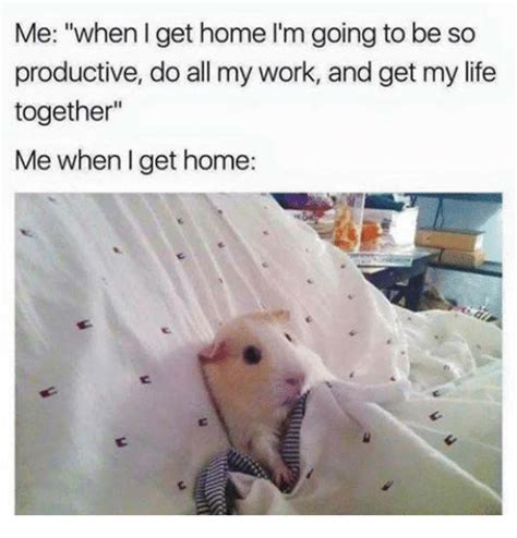 me when i get home l m going to be so productive do all my