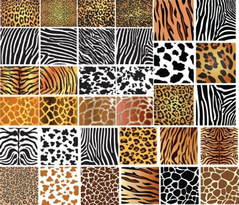 Animal Skin Patterns Vector Background Welovesolo | animal skin patterns vector background welovesolo