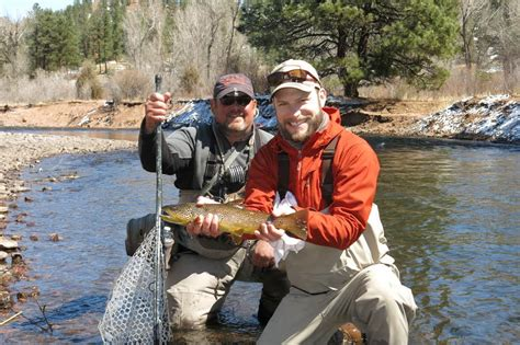 colorado fly fishing newsletter apr south platte river fishing report with hamilton
