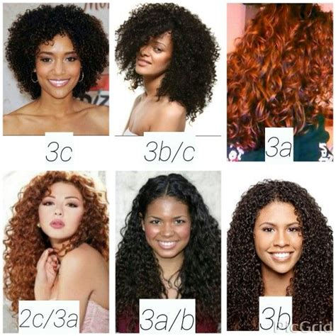 Type 3 Hair Texture by Best 25 Hair Type Chart Ideas On Black Hair