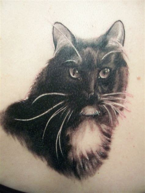 cat tattoo artist cat tattoos tattoo art gallery