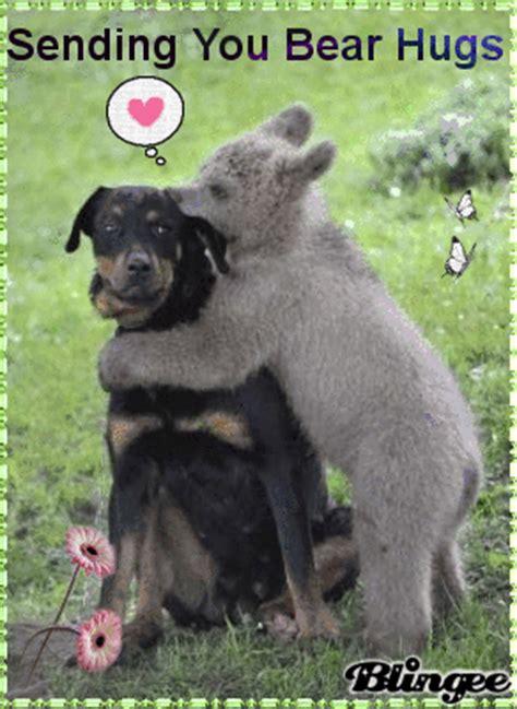sending   big bear hug picture  blingeecom