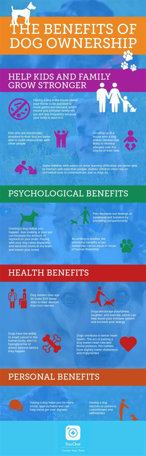 benefits of dogs 4 great benefits of owning a infographic docchat