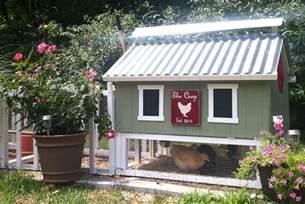 backyard chicken coops sale smart chicken coop