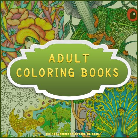 book for adults coloring books