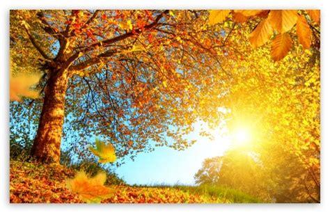 beautiful fall 4k hd desktop beautiful autumn landscape 4k hd desktop wallpaper for 4k