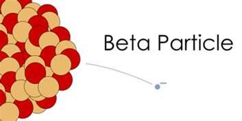 Beta Proton Radiobiology