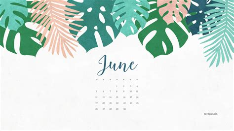 june   calendar wallpaper desktop background