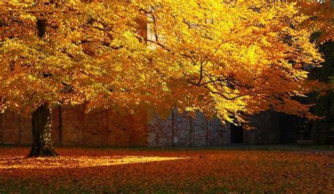 grandi giardini 33 grandi giardini italiani da scoprire d autunno