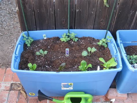 plastic containers for gardening raised beds from plastic storage containers agridude