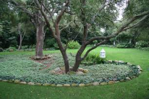 White House State Dining Room oaks with dead nettle traditional landscape santa