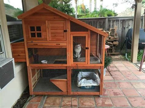 cat enclosures diy 10 best images about diy cat enclosures on
