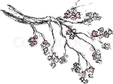 Home Decoration Flowers Spring Sakura Blossom Drawing Stock Vector Colourbox