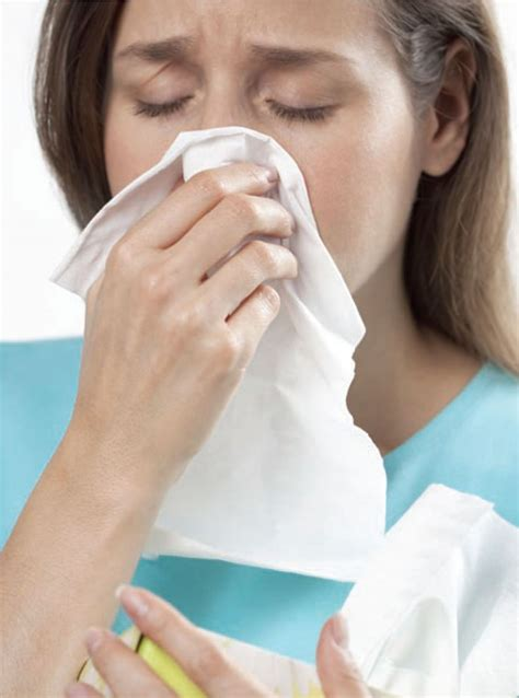 flu symptoms january 2013 stomach flu symptoms