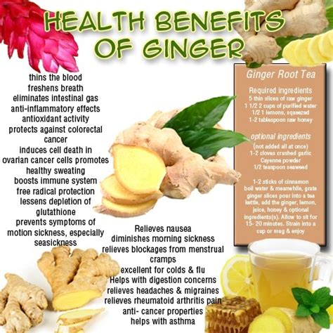 does reducing 5ar regrow hair has anyone had any success using ginger to regrow their
