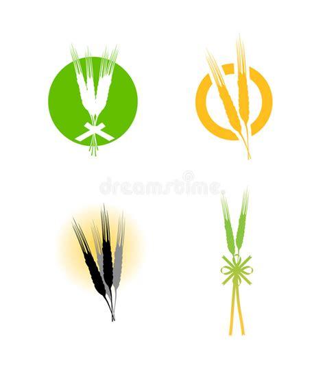 whole grains logo food wheat grains logo stock vector illustration of crop