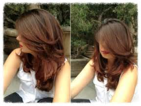 fall hair colors for brunettes fall hair colors for brunettes ideas 2016 ombre hair info