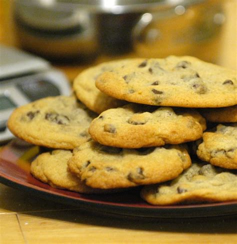nestles toll house cookies nestle toll house chocolate chip cookies recipe file cooking for engineers