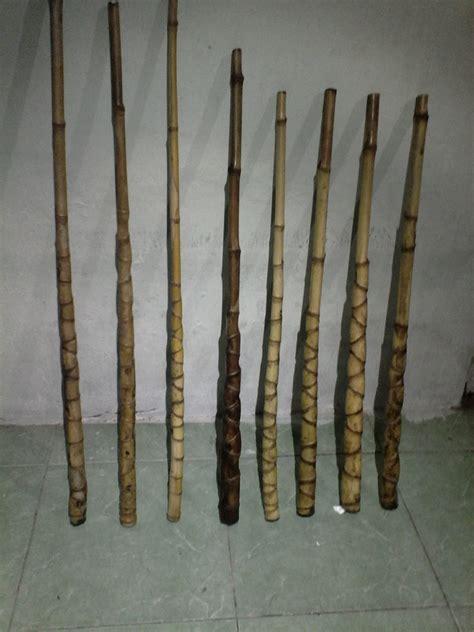 Jual Bibit Bambu Cendani jual beli bambu cendani jenis sisik naga baru