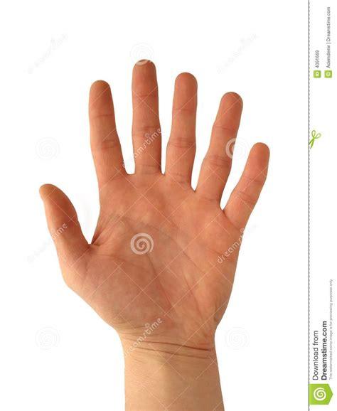 imagenes libres manos mano con seis dedos im 225 genes de archivo libres de regal 237 as