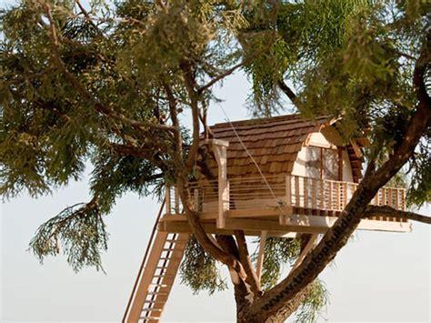sugli alberi italia casette sull albero per bambini la casa sullualbero with