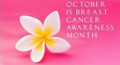 October Is Breast Cancer Awareness Month 3 by October S Breast Cancer Awareness Month Events
