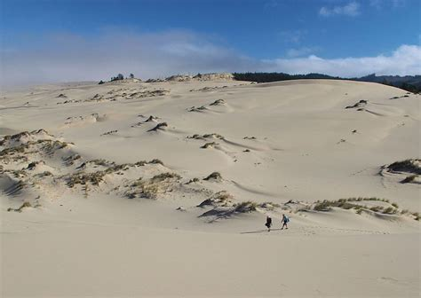 dune dune 1 spanish b072dynzsq oregon dunes a photo from oregon west trekearth