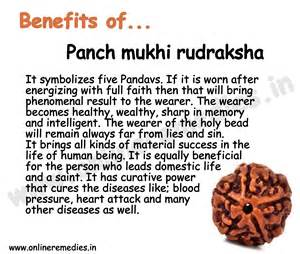 rudraksha meaning and mukhi types 5 mukhi rudraksha 5 mukhi rudraksh benefits buy five