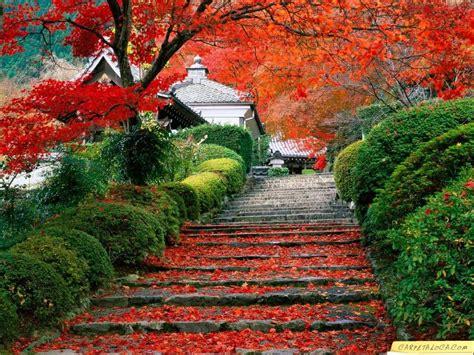 imagenes gratis japon fondos de oto 241 o en japon fondos de pantalla de oto 241 o en