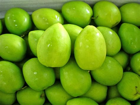 m y fruit ltd green date products taiwan green date supplier