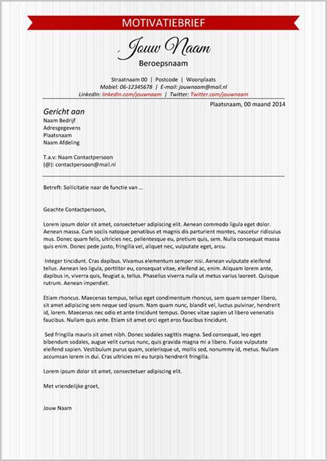 format zakelijk cv zakelijk en elegant cv format 210 on behance
