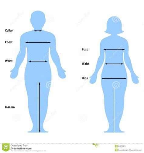 clothing size chart royalty free stock image image 24972816