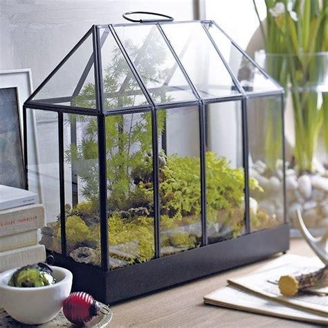 ikea mini greenhouse crate and barrel mini greenhouse gardening pinterest