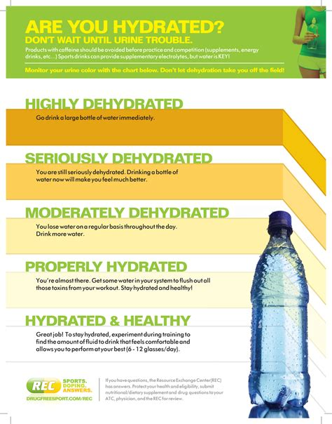 hydration chart am i hydrated urine color chart quotes