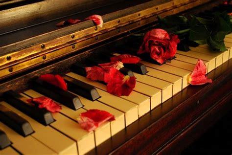 piano flowers nature background wallpapers  desktop