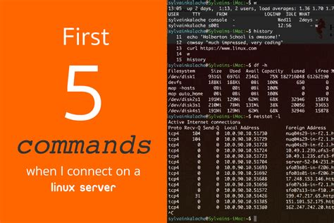 tutorial linux virtual server first 5 commands when i connect on a linux server linux