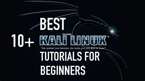 kali linux tutorial for beginners download maltego tutorial kali linux seotoolnet com