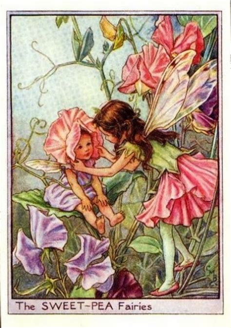 Flower Fairies Of The Garden Garden Flower Fairies Flower Prints