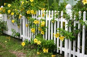 Colonial Curb Appeal - 26 white picket fence ideas and designs